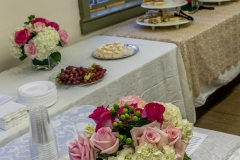 Open House-2